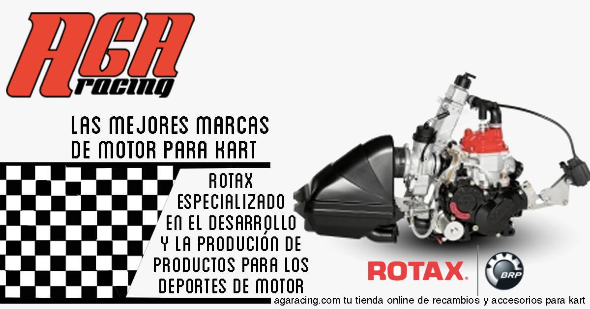 venta motor rotax para karting