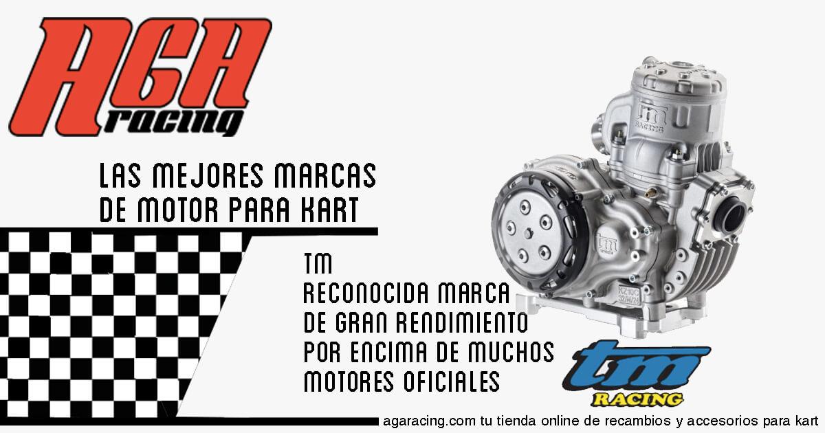 venta motor tm para karting